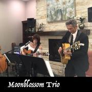 Moonblossom Trio @ Opal Divine's Austin Grill